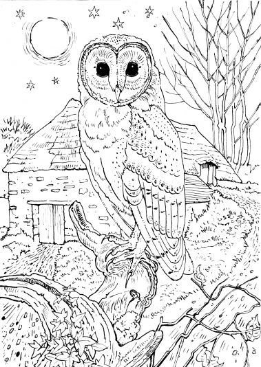 Coloring Pages Free To Print Colouring