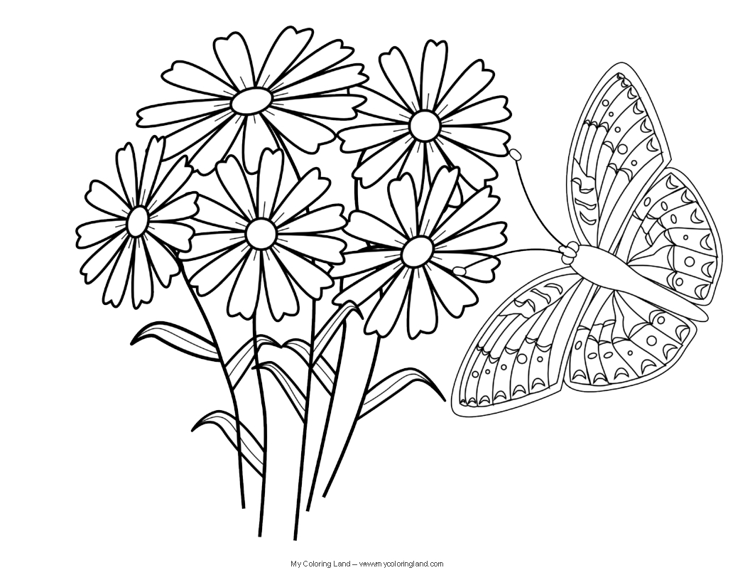 butterfly coloring pages butterfly coloring pages for kids 28 free printable coloring pages