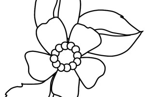 Flowers coloring pages | color printing | Flower | Coloring pages free | #7