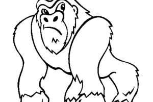 Monkey coloring pages | Monkey coloring page | #24