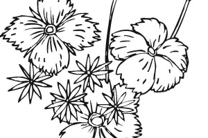 Spring Coloring Pages LITTLE FLOWERS